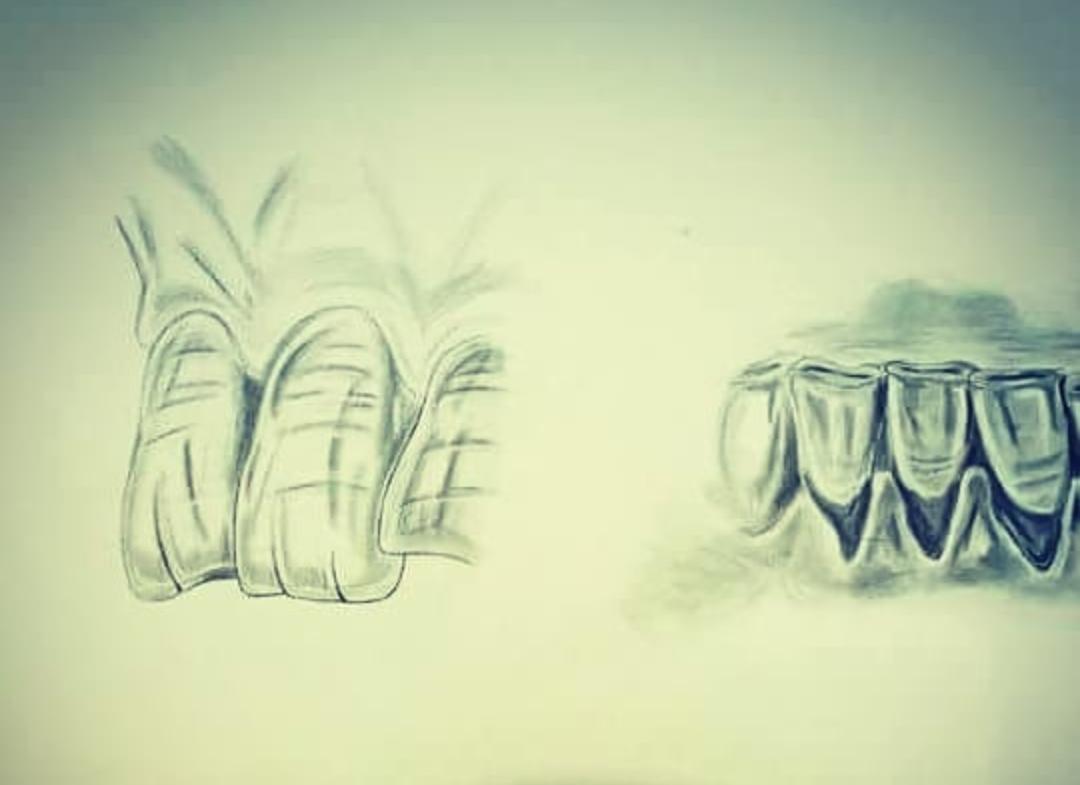 Dinți desenati în creion